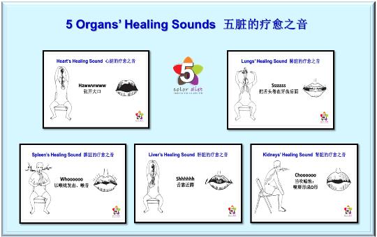 5 Organs' Healing Sounds