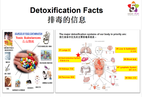 Detoxification Facts