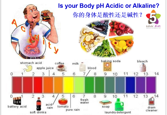 Body pH Facts